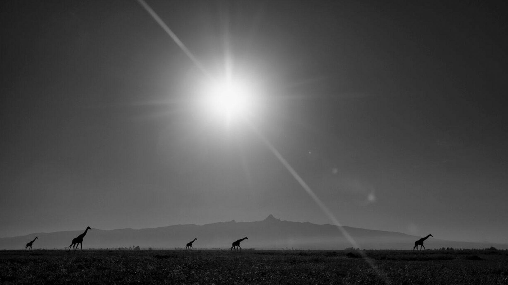 Kaziras Mt. Kenya
